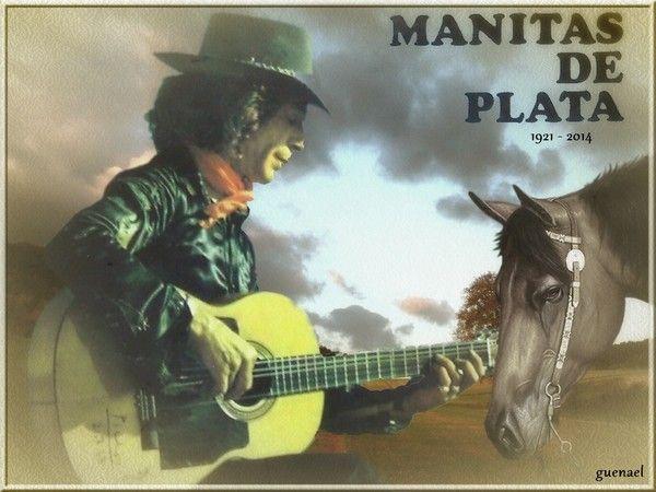 MANITA DE PLATA